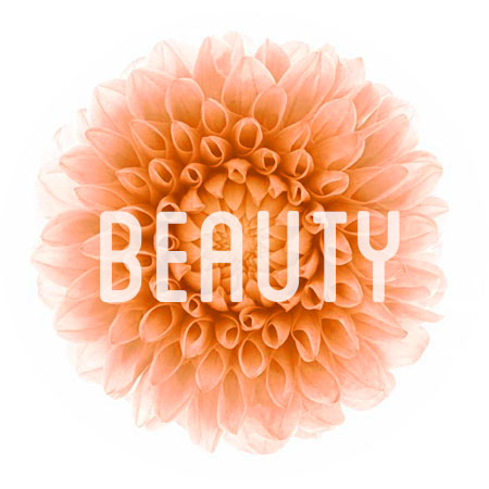 beauty-flower